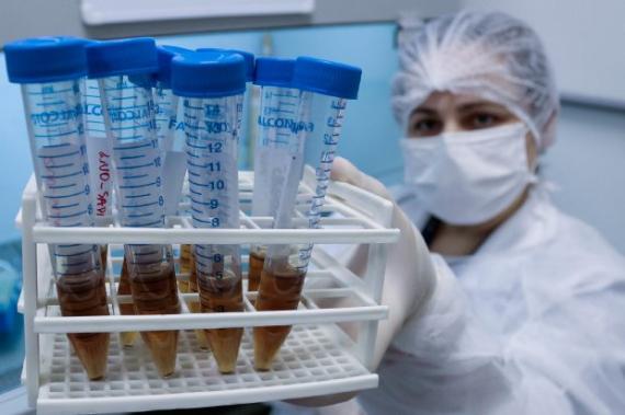 Pesquisa em SC avalia mutações do novo coronavírus