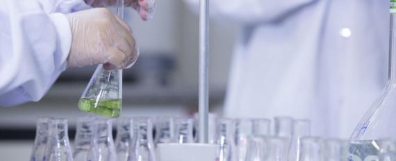 BRF vai investir R$ 45 milhões na modernização dos laboratórios da companhia